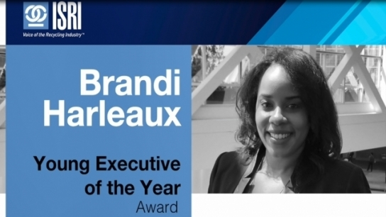 Young Executive of the Year Award: Brandi Harleaux
