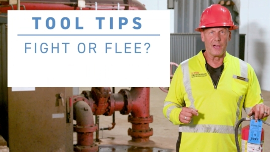 ISRI Tool Tips - Fight or Flee?